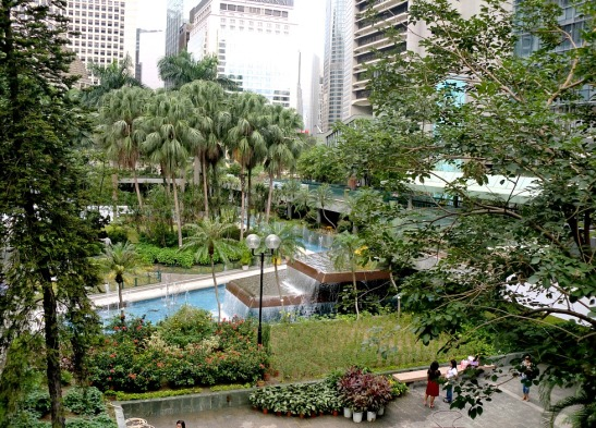 A park in the CBD