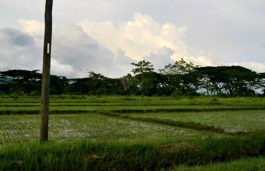 Iwahig Prison, Puerto Princesa