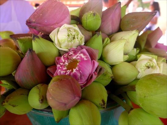 What to do in Ayutthaya